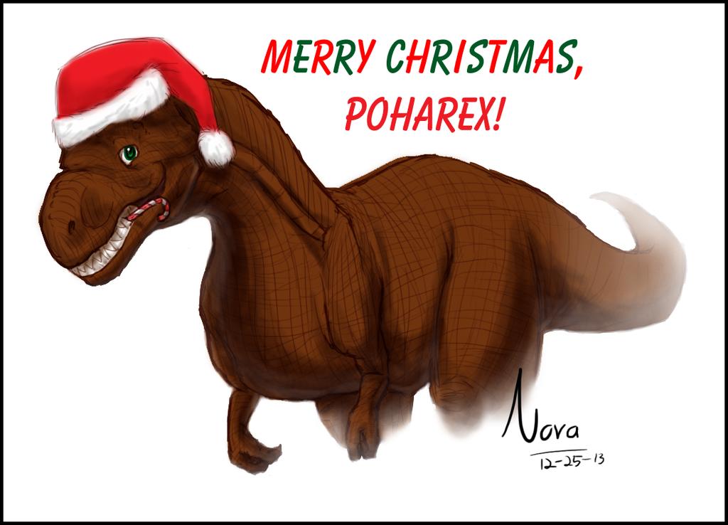 Poharex Christmas Present - By Sarah DeCamp